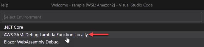 Select AWS SAM as Environment
