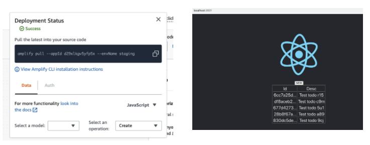 Screenshot of Admin UI + local frontend