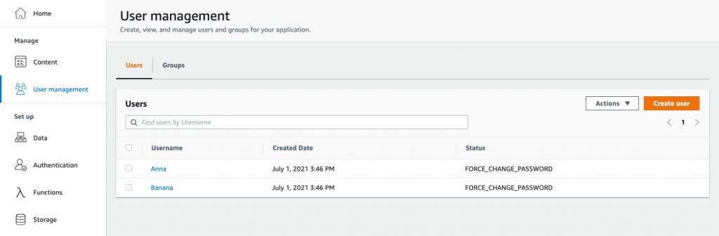 Screenshot of Admin UI's User Management Screen