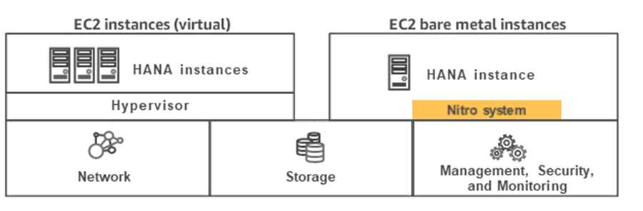 EC2 virtual and bare metal instances