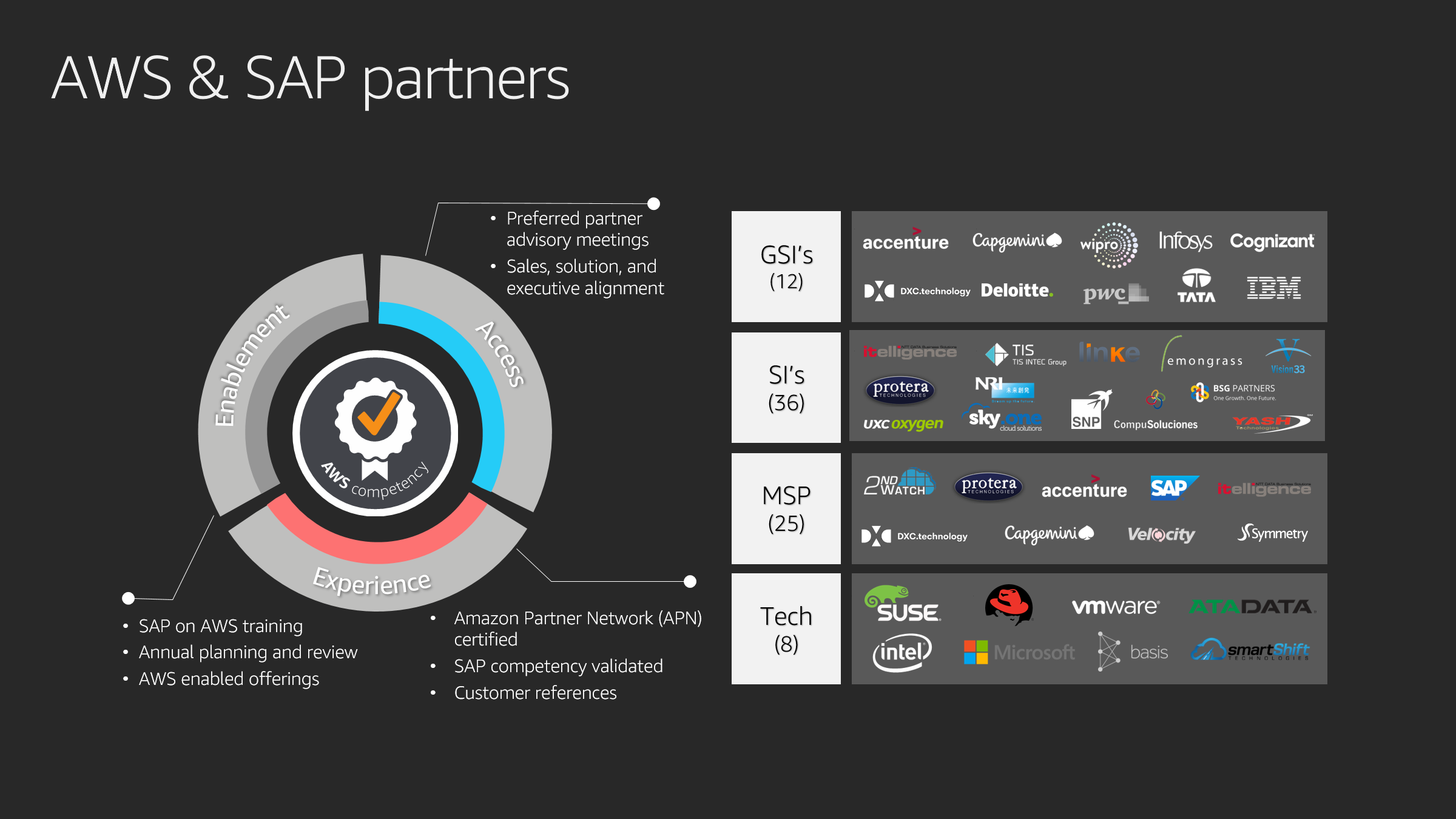 Image that shows AWS & SAP partners including GSIs, SIs, MSPs, and Tech Partners.