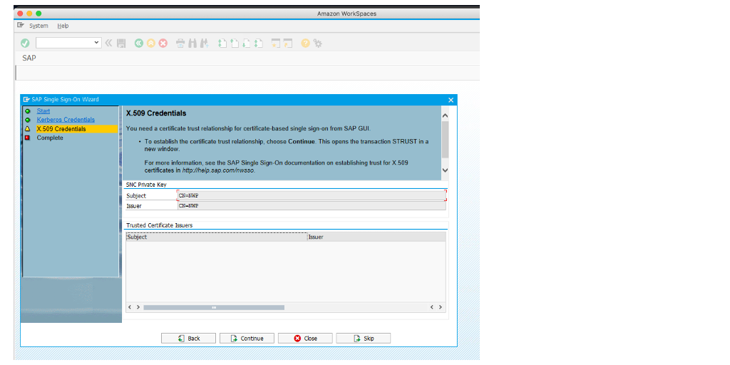 The image shows the final step in SAP T-code SNCWIZARD.