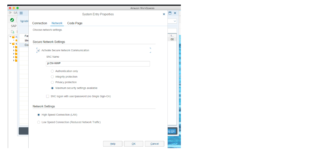 The image shows configuration for SAP GUI logon entry.