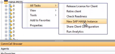The following image shows how addtional HANA instances can be added to Pseudo-client