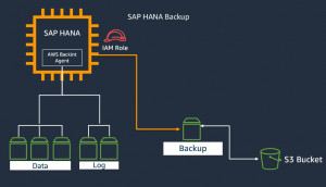 SAP HANA Database Backups using EC2 EBS Volumes