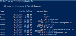 Powershell Console on the Winglobeat Directory