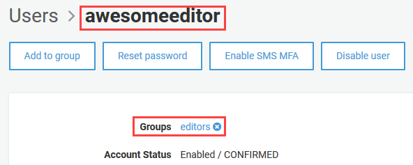 User now member of editors group