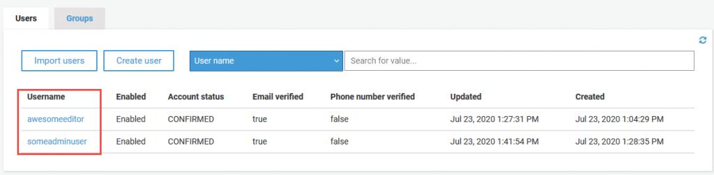 View Amazon Cognito users created