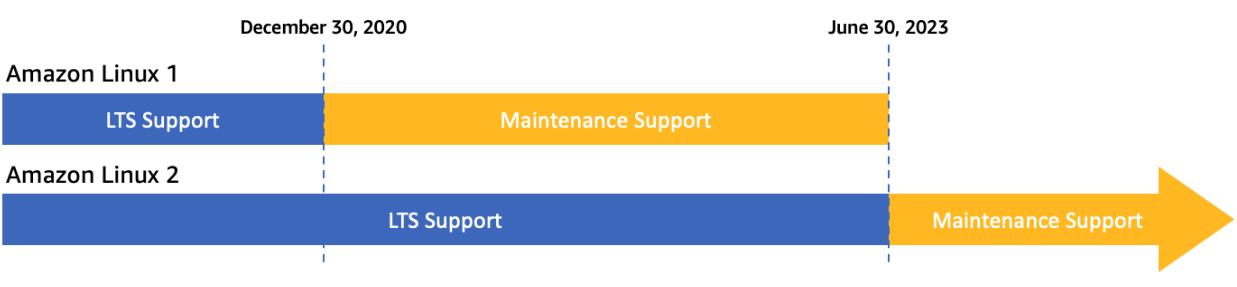 Support timeline