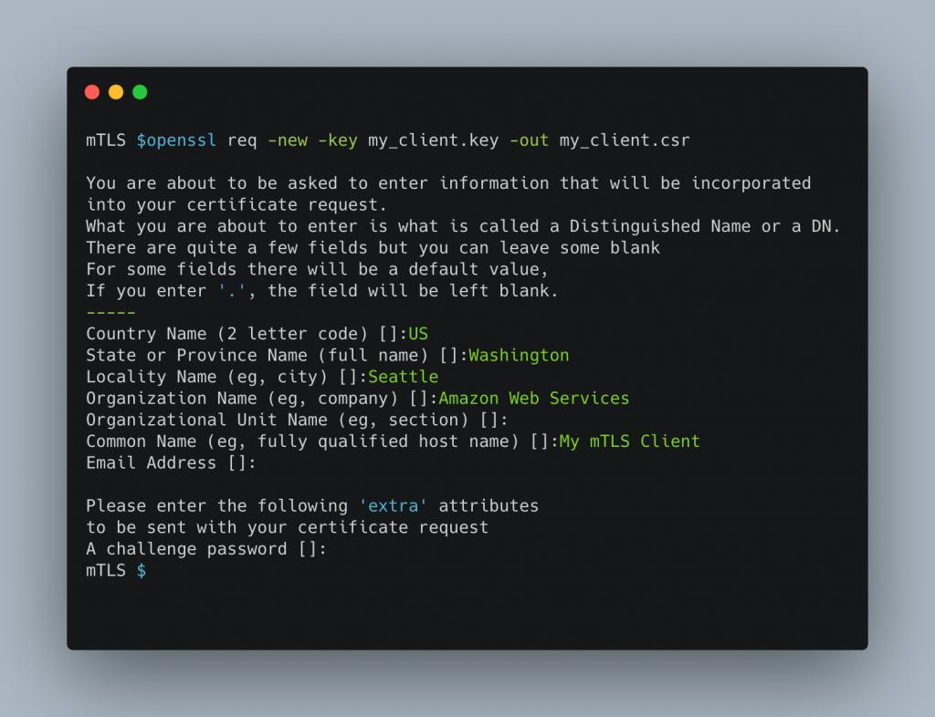 OpenSSL options