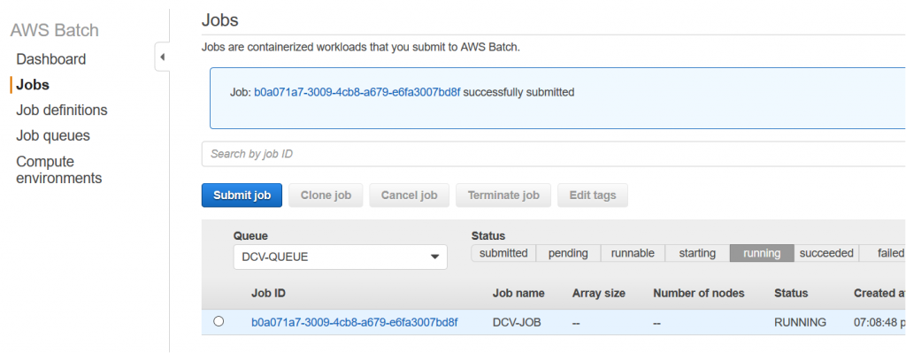 Running DCV job on AWS Batch