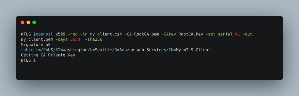 openssl command output