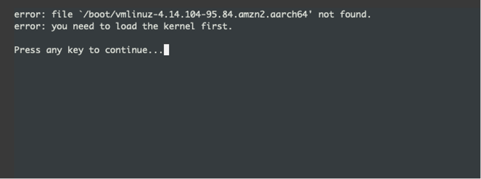 Figure 2: Linux boot failure - kernel not found