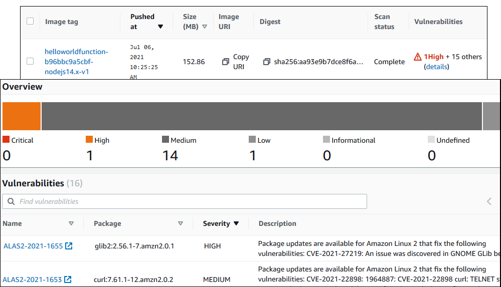Elastic Container Registry image scanning example results