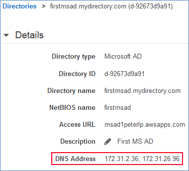 Screenshot of the two DC IP addresses for your Microsoft AD directory