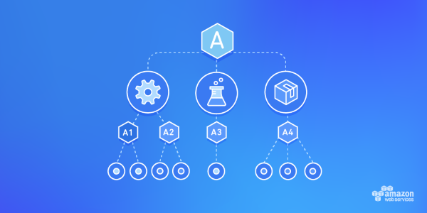 AWS Organizations service image