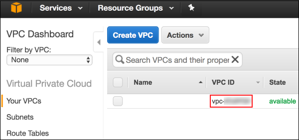 Screenshot showing where to find your VPC ID number