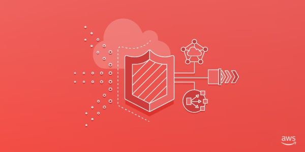 AWS Shield image