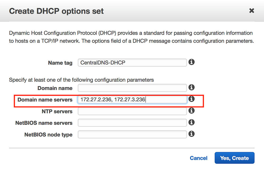 "The ""Create DHCP options set"" dialog box"