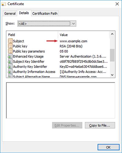 Figure 12: Server certificate details