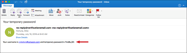 Figure 9: Example email with temporary password