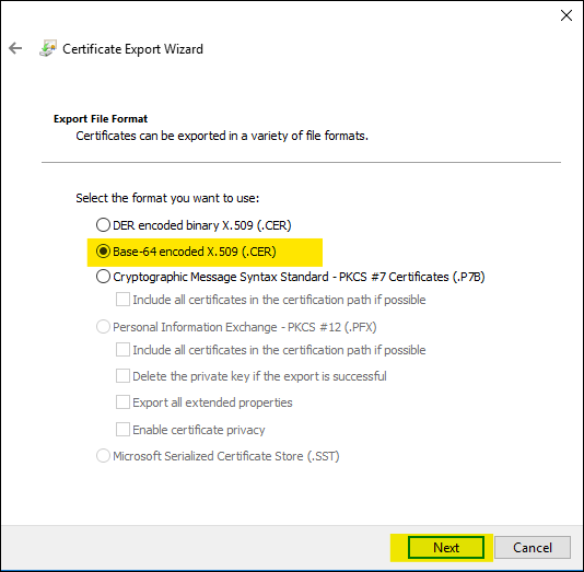Figure 3: Select the base-64 encoded export file format