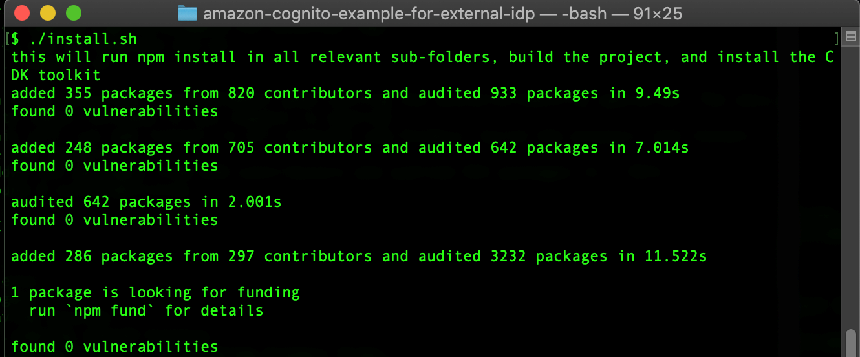 Figure 3: Installing dependencies