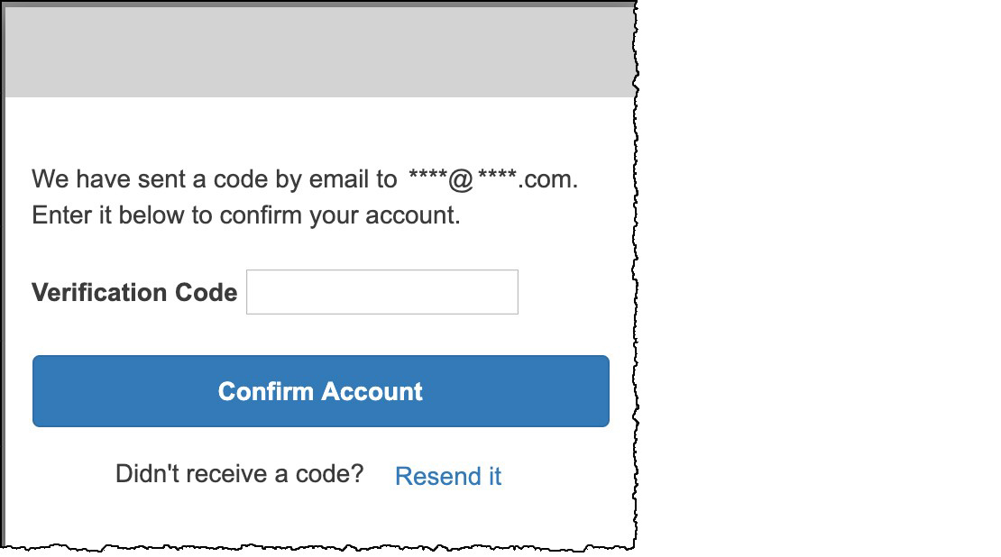 Figure 10: Enter the verification code