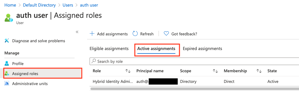 Figure 12: Hybrid Identity role is now assigned to the User