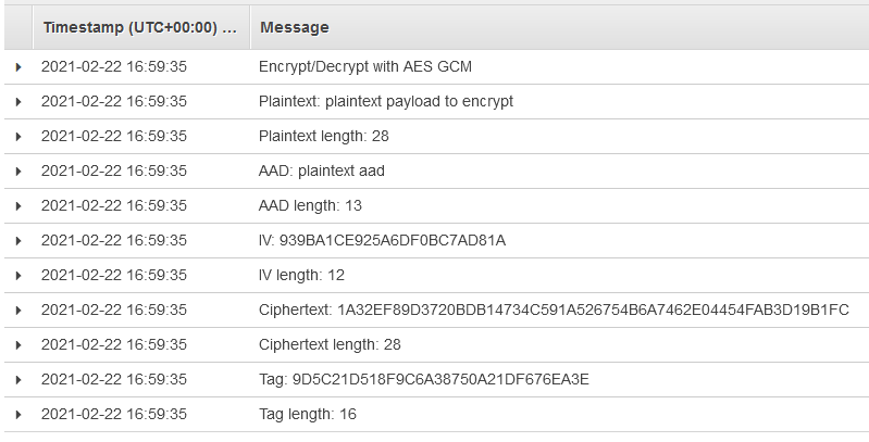 Figure 4: CloudWatch log output from our demo application