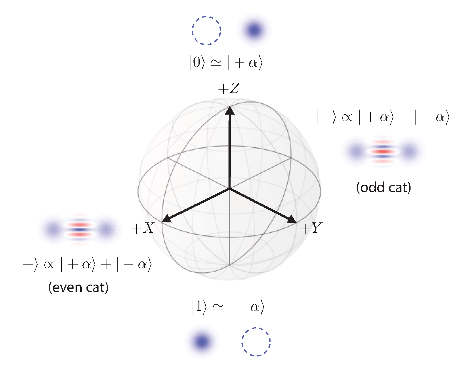 Drawing of a Bloch sphere of the cat qubit