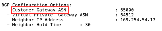 Site-to-site VPN connection configuration file example highlighting customer gateway ASN setting