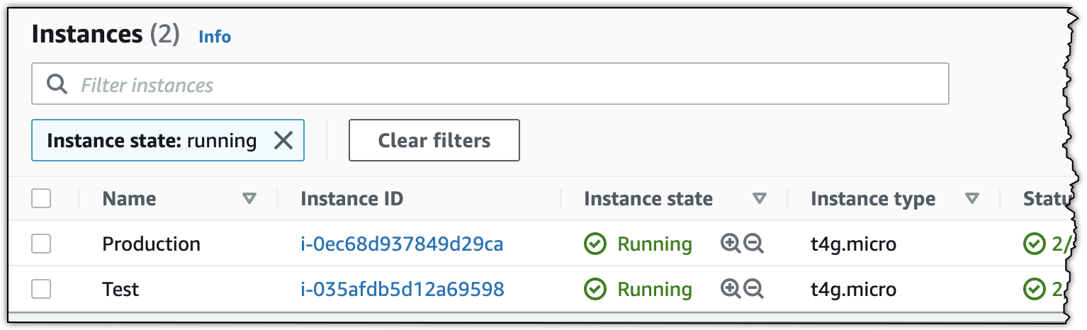 Newly launched EC2 instances in the AWS Management Console.