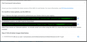 View container details popup with two commands