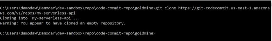 Git clone empty repository