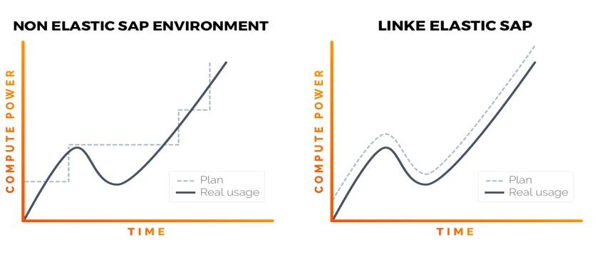 Linke Elastic SAP