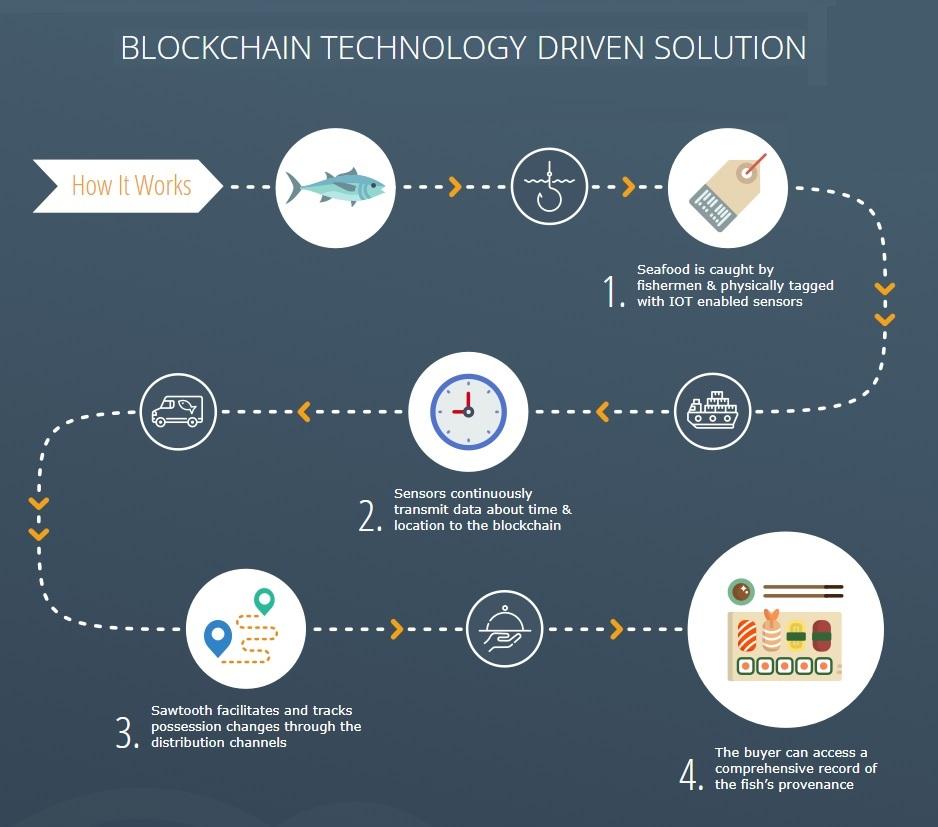 Sawtooth Blockchain-1.1