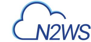 N2WS Logo-2.1
