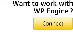 Connect with WP Engine-2