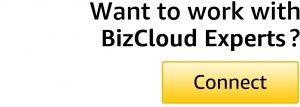 Connect with BizCloud-Experts-1