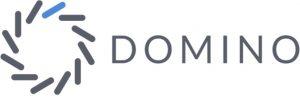 Domino Data Lab-logo-1.1