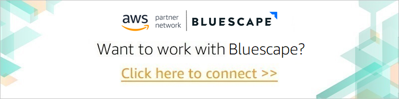 Bluescape-APN-Blog-CTA-1