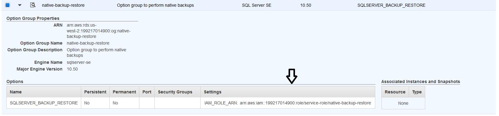 Migrating Microsoft SQL Server Enterprise Workloads to