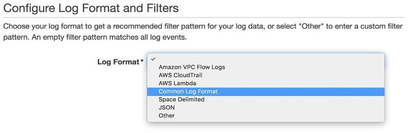 Configure Log Format and Filters 画面のスクリーンショットのプレビューと、Common Log Format の選択