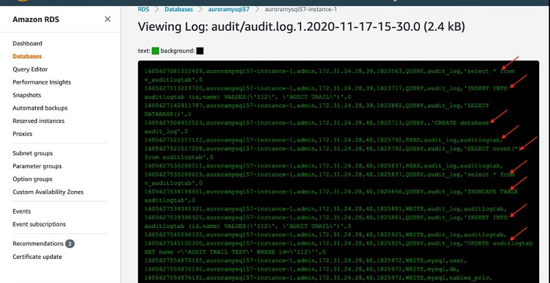 The following screenshot shows the view of one of your audit log files.