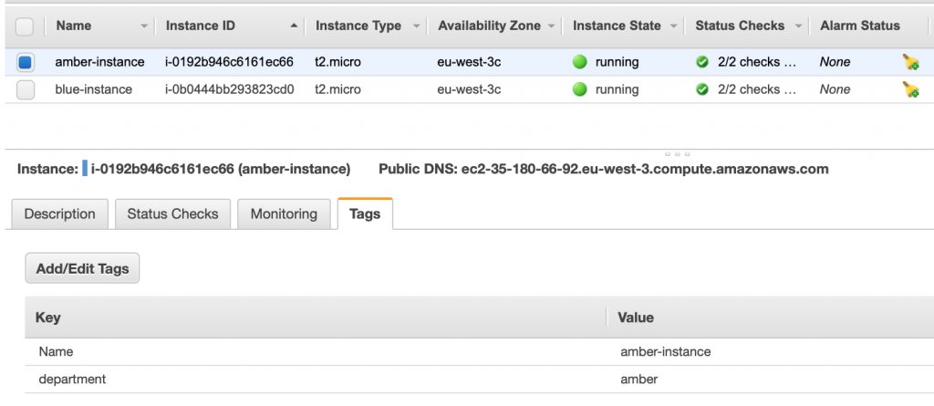 Figure 5: Instance tags on the EC2 console