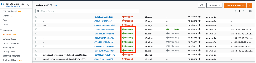 Instances page displays the running instances.