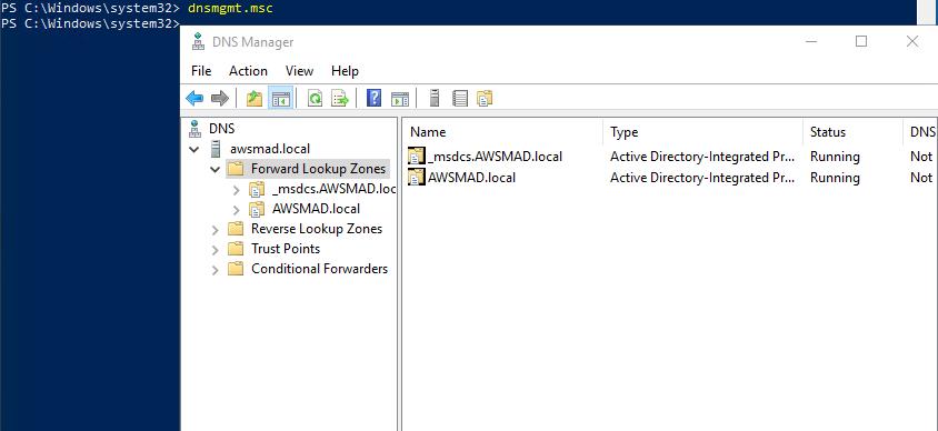 A screenshot of DNS Manager