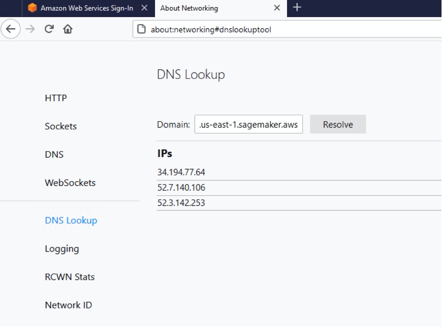 The DNS Lookup page in Firefox includes Sockets, DNS, WebSockets, and other fields.