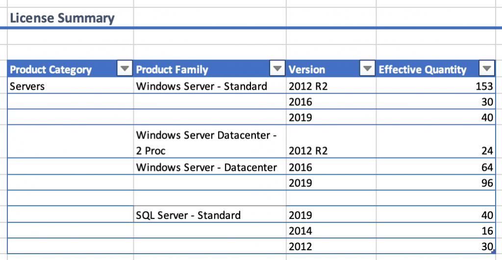 License Summary section of an Excel spreadsheet displays columns for product category, product family, version, and effective quantity.